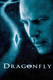 Ver DragonFly: La Sombra de la Libelula online