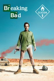 Breaking Bad: Temporada 1
