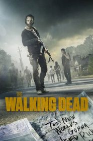 Ver The Walking Dead online