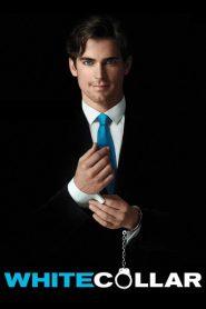 Ver Ladron de guante blanco (White Collar) online